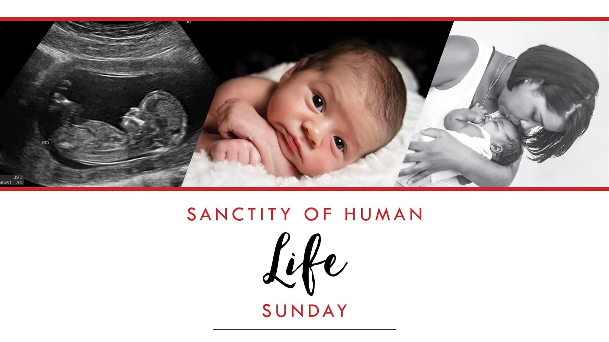 Sanctity of Himan Life Sunday