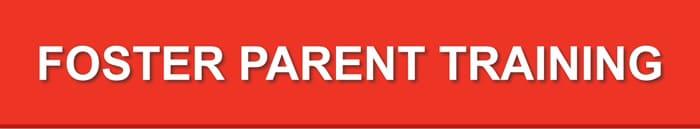 Foster Parent Training